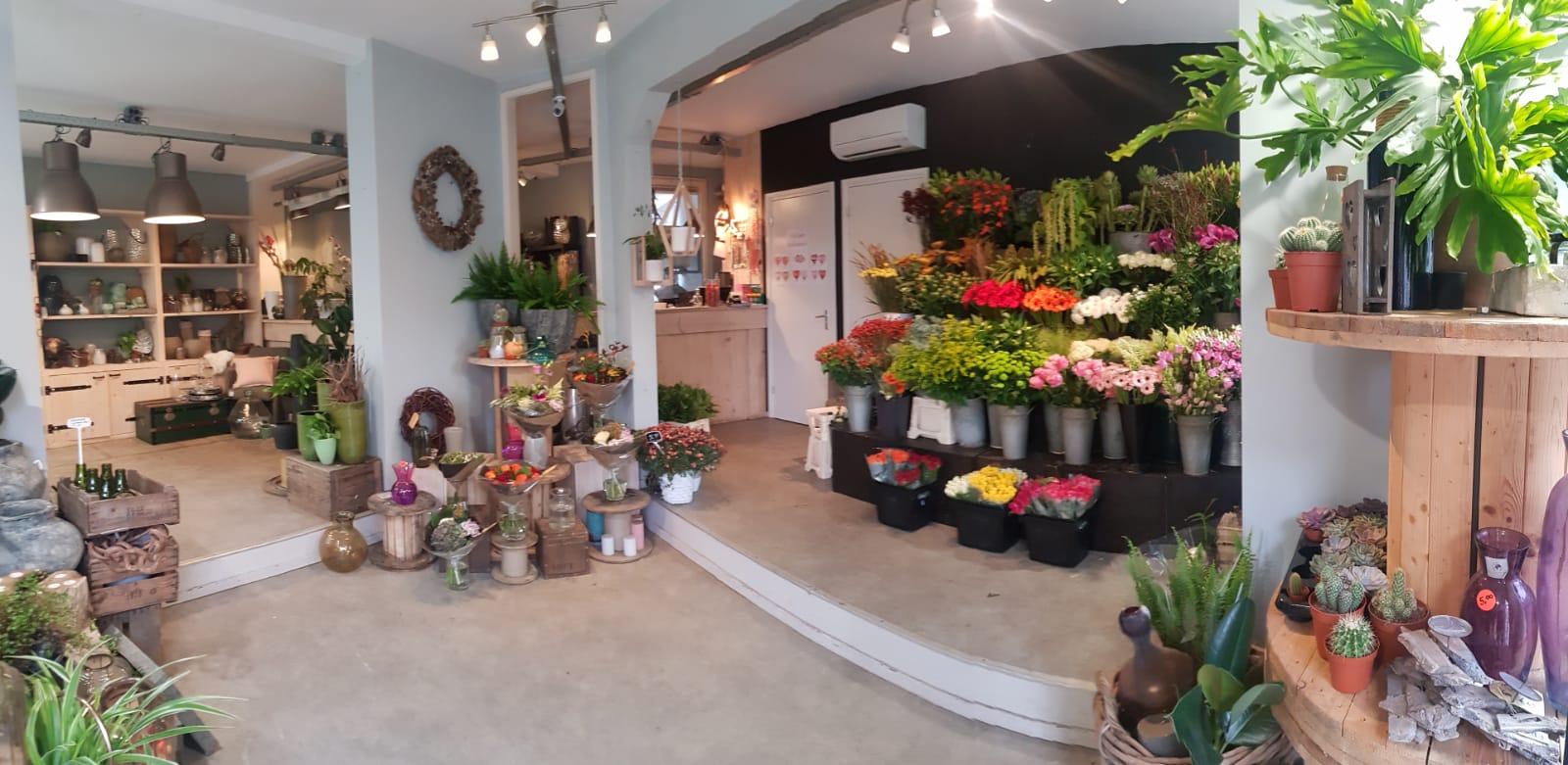 Bloemenwinkel Rotterdam